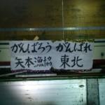 DSC_0038-1.jpg